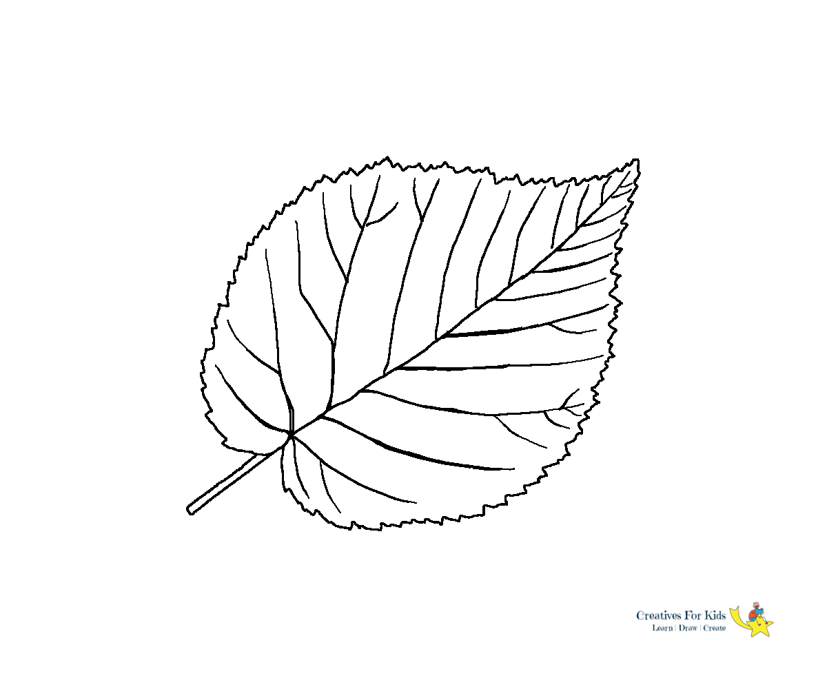 Leaf Coloring Pages Kiddo