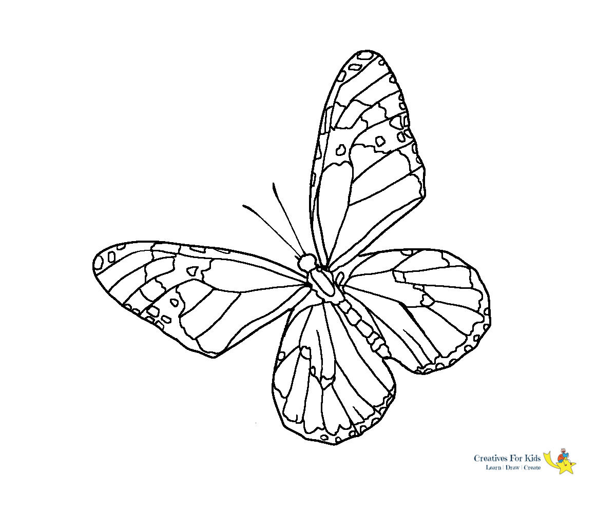 Step coloring pages of butterflies