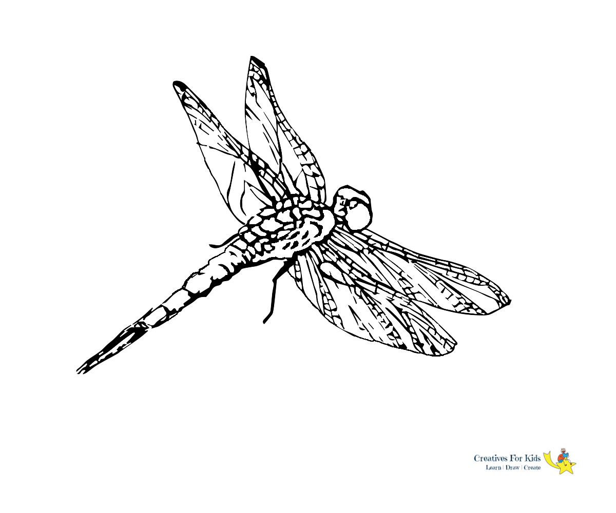 Intricate Dragonfly coloring page | Free Printable Coloring Pages | 1000x1200