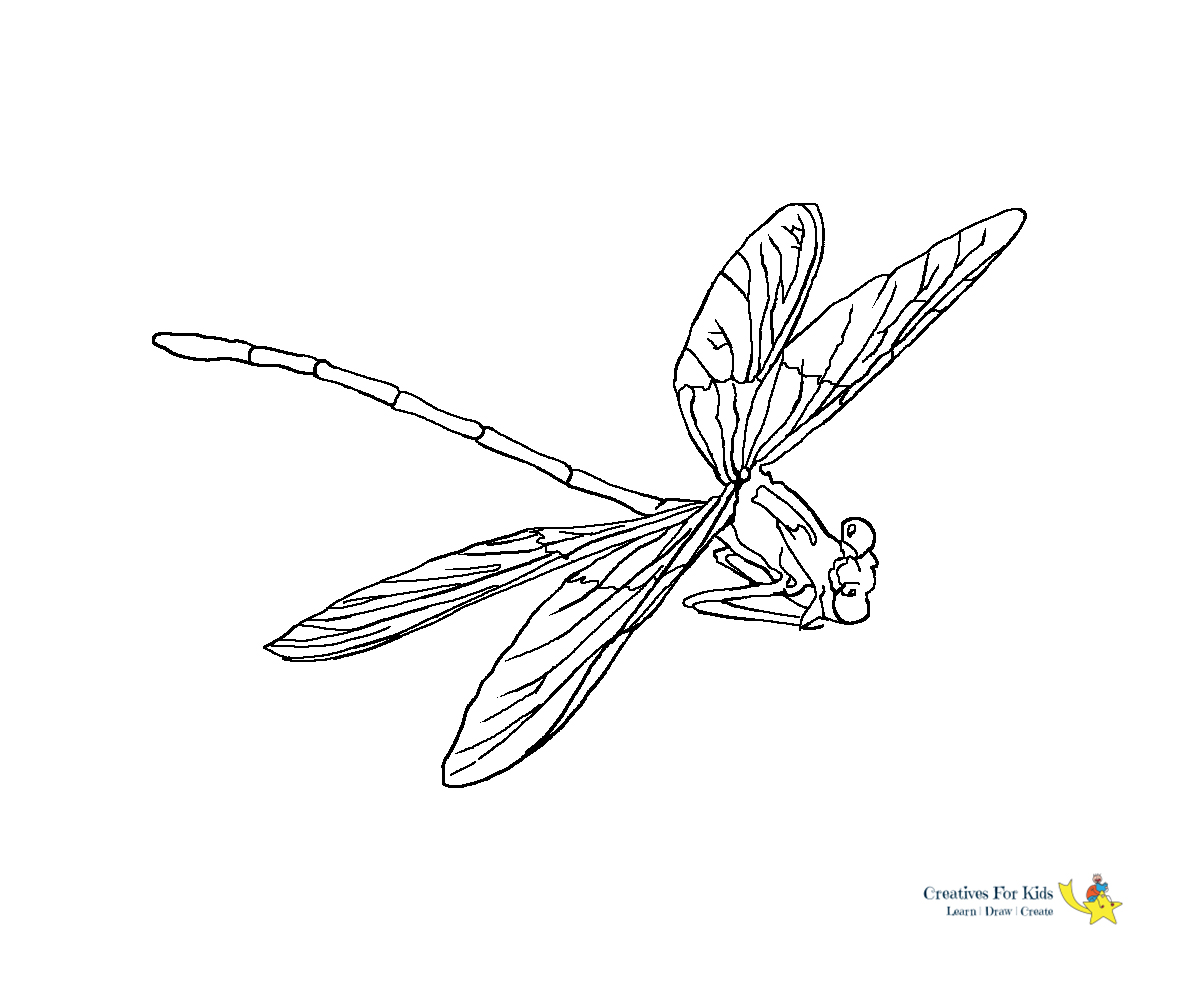 Dragonfly Coloring Pages – coloring.rocks! | 1000x1200