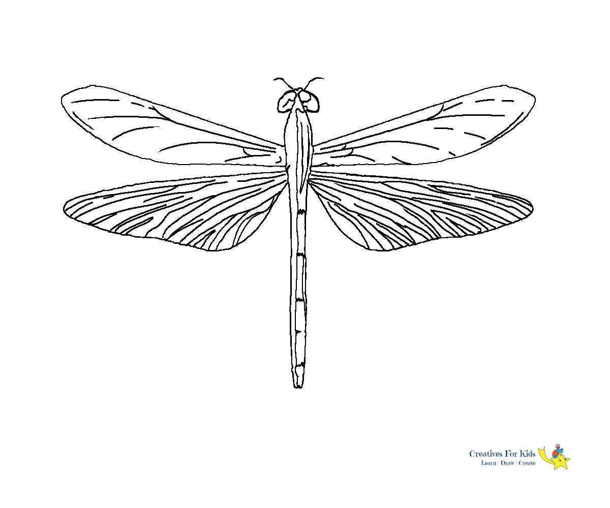 Dragonfly Colouring Page by WelshPixie on DeviantArt | 1000x1200