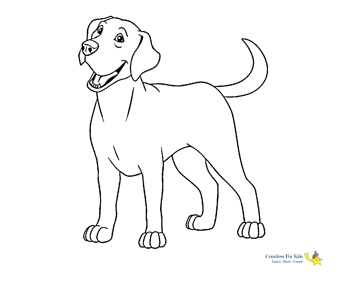 Yorkshire Terrier coloring page from Dogs category. Select from ... | 1000x1200