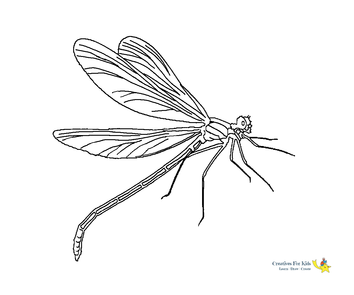 Dragonfly Coloring Pages - Kiddo