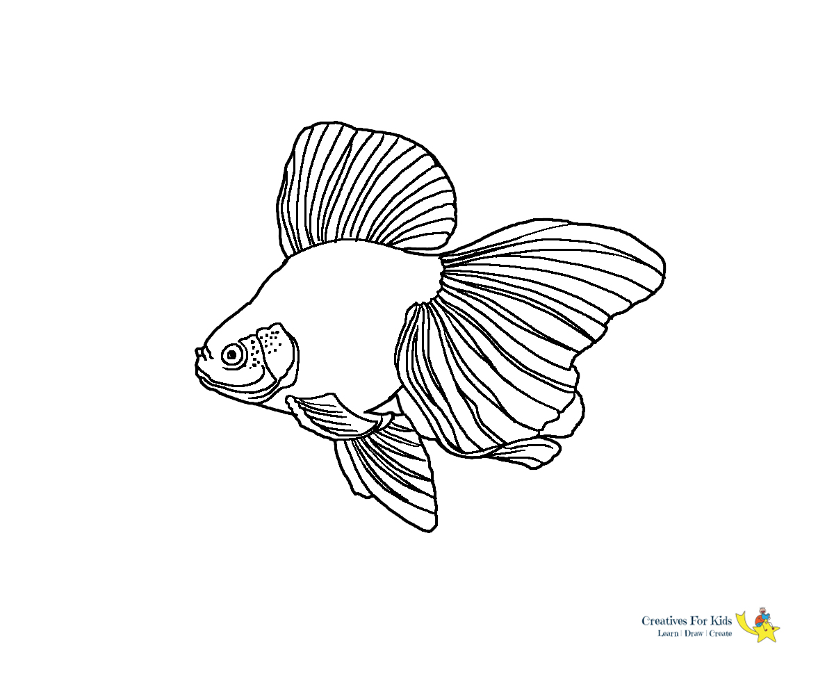 Rainbow Fish S Of Sea Animalsf3b1 Coloring Pages Printable | 1000x1200