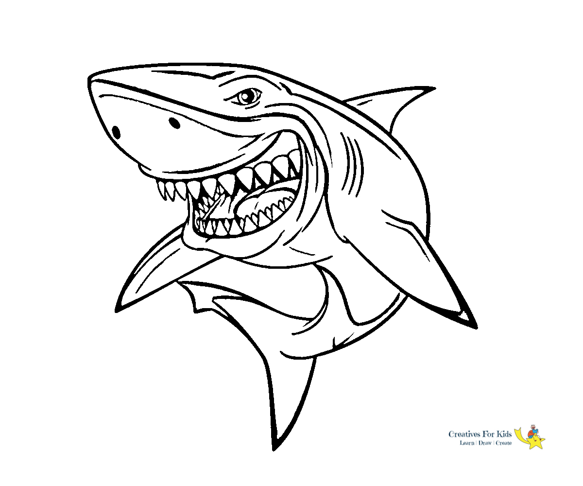 Sharks - Free printable Coloring pages for kids | 1000x1200