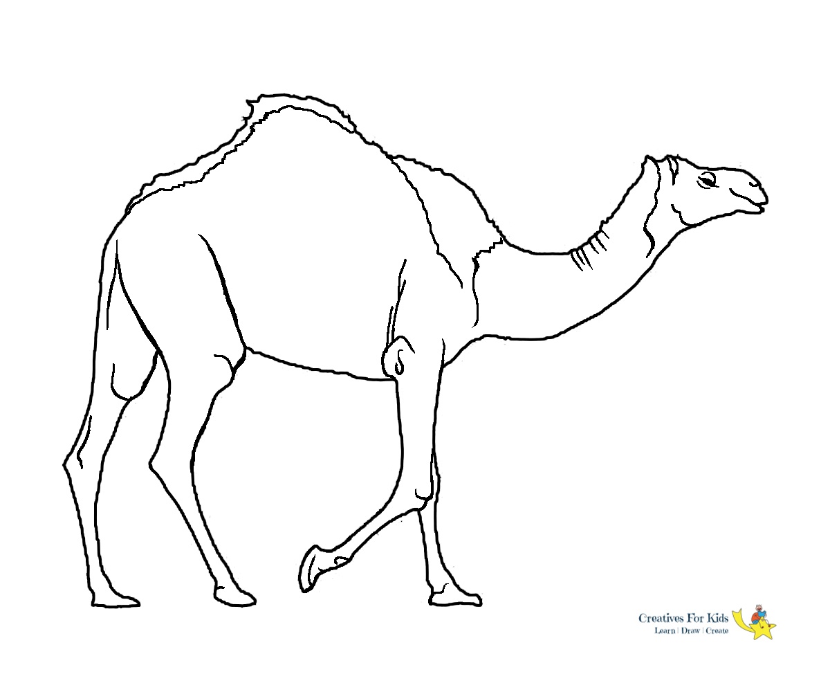 Camel Coloring Page 006 Coloring Page - Free Camel Coloring Pages ... | 1000x1200