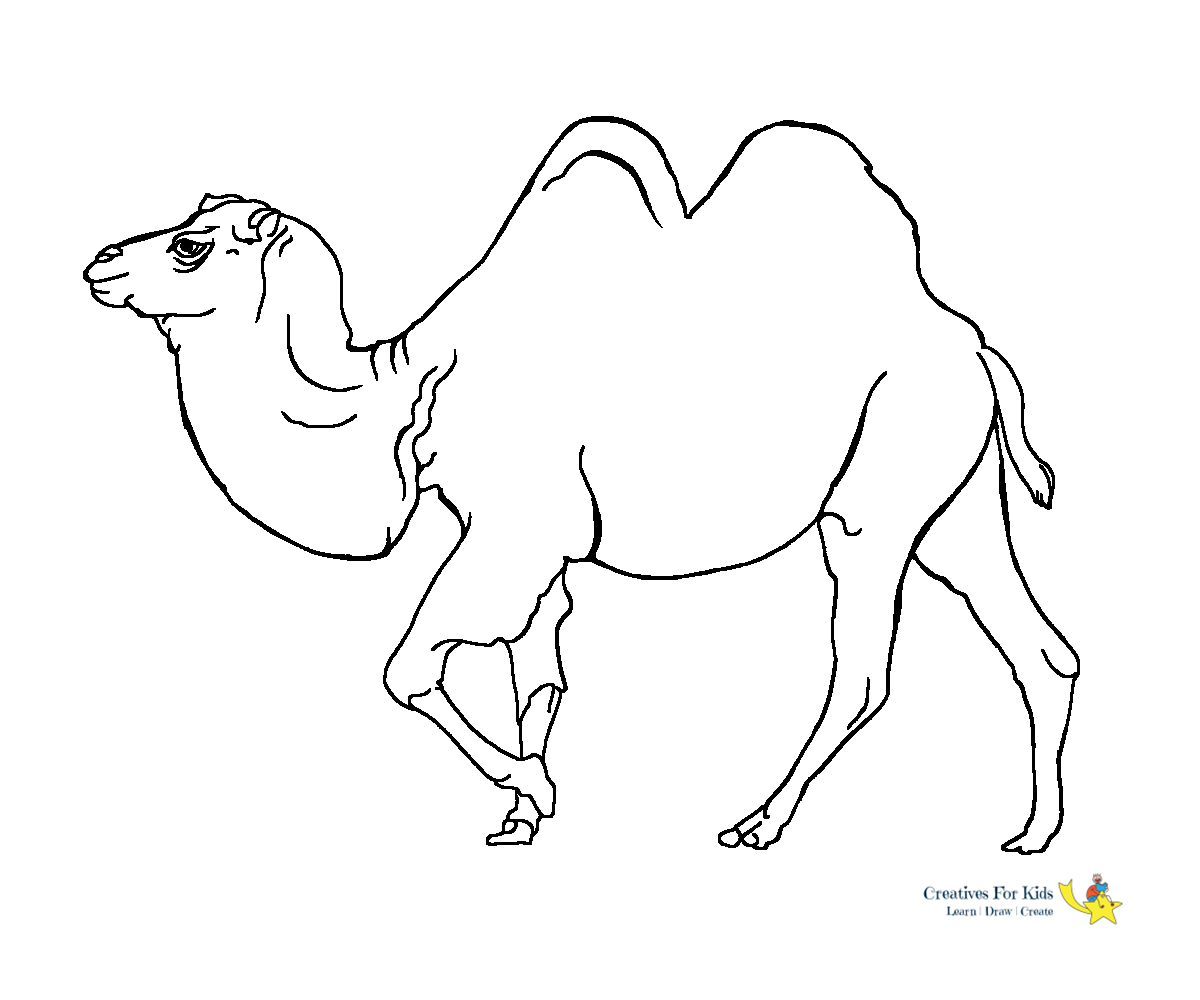 Camel Coloring Page - Art Starts for Kids | 1000x1200