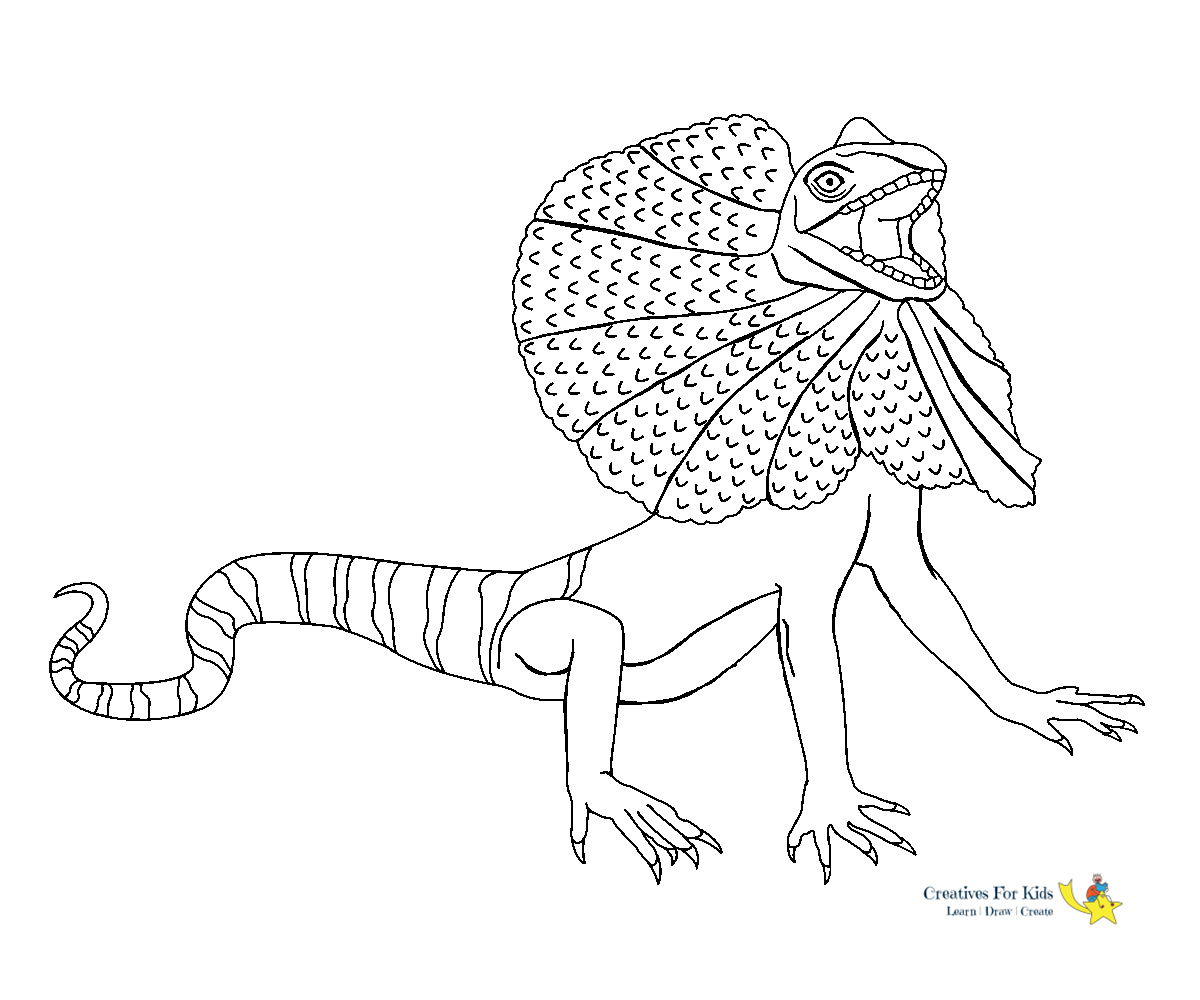 Lizard Coloring Pages Kiddo