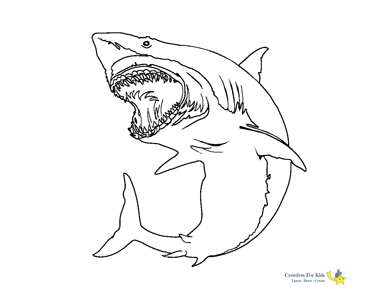 Shark Coloring Pages Kiddo